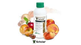 Foto de Nueva autorización 2015 para Scholar, la solución para la sanidad y calidad poscosecha en fruta de hueso
