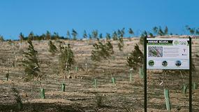 Foto de 'Un Scania, Un árbol', reconocido como buena práctica empresarial