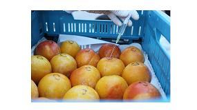 Picture of Innovaci�n tecnol�gica para la higienizaci�n de frutas y hortalizas