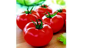 Picture of Pl�sticos biodegradables a partir de la piel del tomate