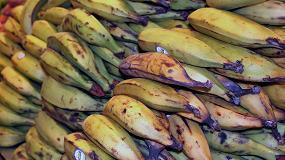 Foto de Las empresas españolas de distribución desperdician menos de un 1% del total de los alimentos comercializados
