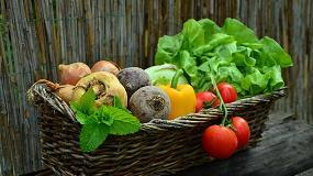 Fotografia de Las verduras fritas con aceite de oliva tienen m�s propiedades saludables que las cocidas