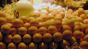 Foto de EE UU demanda 41 millones de docenas de huevos
