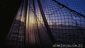 Foto de El Gobierno aprueba la financiaci�n del 20� aniversario del C�digo de Conducta para la Pesca Responsable