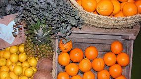 Picture of La importaci�n espa�ola de frutas y hortalizas en mayo creci� un 20% en volumen