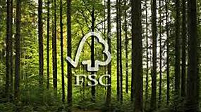 Foto de Technotraf refuerza su compromiso con la sostenibilidad con la certificaci�n FSC