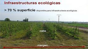 Foto de Infraestructuras ecológicas en frutales: un cambio de paradigma