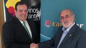 Foto de Grupo Cajamar y Vinos Alicante D.O.P. impulsan la actividad del sector vitivinícola
