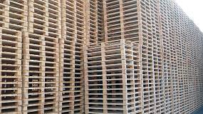 Foto de La fabricación y utilización de palets de madera en España creció en 2014