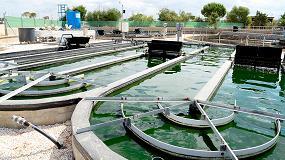 Foto de La UVa participa en un proyecto nacional de producción de microalgas para obtener bioproductos