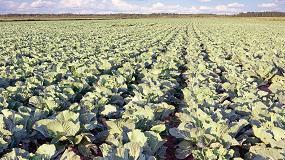 Fotografia de El Gobierno aprueba el incremento hasta el 40% de las subvenciones para la contrataci�n del Seguro Agrario