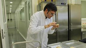Foto de Nuevos prototipos de pan enriquecido con hierro microencapsulado para mantener sus cualidades sensoriales