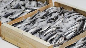Fotografia de El 80% de los españoles preocupados con la limpieza de las cajas de pescado fresco