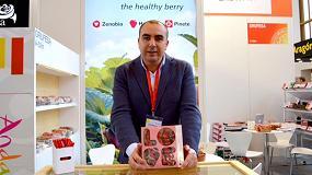 Foto de Grufesa mostrará en Fruit Logistica sus novedades de 'packaging' para esta campaña