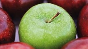 Foto de El cultivo de manzana en Girona se puede ver comprometido por culpa del cambio climático