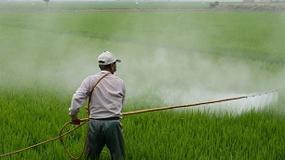 Foto de Crean un novedoso software que analizar� los efectos de la exposici�n a pesticidas