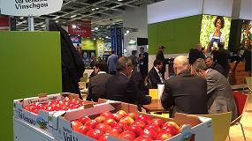 Foto de Primera mitad de temporada para manzanas Val Venosta con buenas cifras de venta y algunos cambios en su estrategia de comercialización