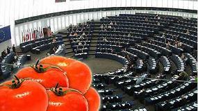 Foto de Asaja, COAG, Upa, Cooperativas y Fepex reclaman a la Comisión Europa un paquete de medidas para evitar el colapso del mercado comunitario de tomate