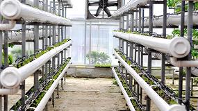 Foto de Próxima jornada técnica agroalimentaria 'virosis en hortícolas' en marzo