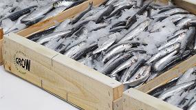 Foto de Nuevas evidencias confirman la higiene de la madera en contacto con frutas, pescado y queso