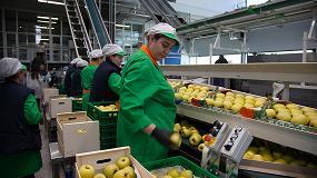 Fotografia de 10 millones de manzanas llevar�n uno de los 200 nombres nacionales m�s populares