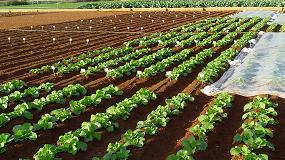 Foto de Propuesta de un nuevo Reglamento de Fertilizantes CE