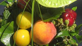 Foto de Prorrogadas las medidas de apoyo para los productores de frutas y hortalizas frente al veto ruso