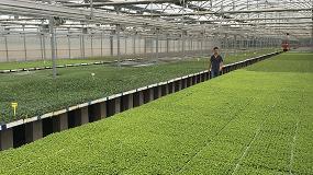 Foto de Controlador de riego en invernadero, la solución de ITC para Planters Montalat