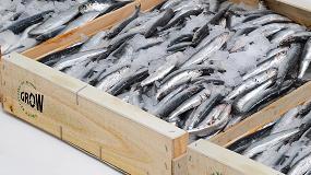 Foto de Los envases de madera para pescado fresco ganan reconocimiento internacional
