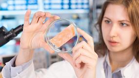 Foto de Metasafe, un nivel superior de conocimiento sobre la microbiota