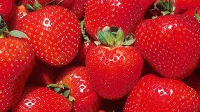 Foto de Vino de frutos rojos para tratar la diabetes