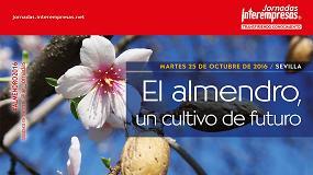 Foto de La evolución del cultivo del almendro y sus perspectivas, protagonistas de la próxima Jornada Interempresas