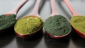Foto de Los alimentos enriquecidos con algas marcan tendencia en Europa