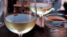 Fotografia de Los vinos espa�oles se abren paso en el mercado neerland�s