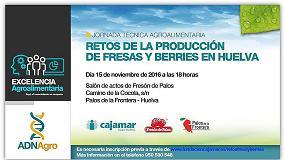 Foto de Cajamar analiza los retos de la producción de fresas y berries en Huelva