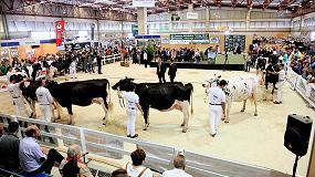 Picture of Los concursos de ganado frisón convertirán de nuevo a la feria Abanca Cimag-Gandagro en espacio de referencia para la raza