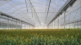 Picture of Crece un 40% la demanda de sustrato para propagación de frutales desde inicio de año