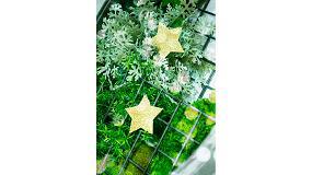 Picture of ¿Cómo decorar un jardín vertical en Navidad?