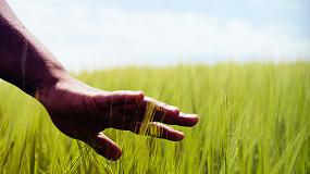 Foto de Cómo evitar enfermedades en agricultura sin el uso de químicos