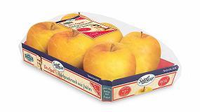 Foto de Nuevo diseño vintage para la manzana Opal de Sanlucar