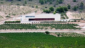 Fotografia de El enoturismo se afianza en España