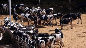 Foto de UPA muestra su oposición a la macrogranja con 20.000 vacas que pretenden construir en Soria