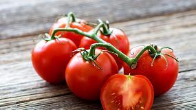 Foto de Cómo recuperar el sabor tradicional del tomate
