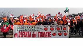 Foto de Los productores de tomate extremeño se movilizan debido a los precios que impone la industria