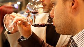 Foto de Túnel del Vino, la mayor exposición de viñedo de España