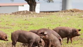 Fotografia de 24 granjas nominadas en la primera edición de los Porc d'Or Ibérico