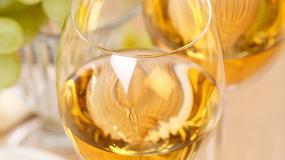 Foto de El MAPAMA establece los requisitos para otorgar el reconocimiento a la celebración de concursos de vinos