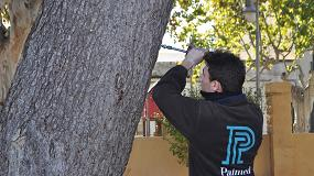 Foto de El seguro de responsabilidad civil decanta la contratación de jardinería profesional