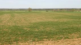 Foto de UPA alerta de las graves consecuencias de la sequía que asola el país