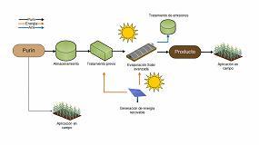 Picture of Investigan el uso de la evaporación solar para solucionar la gestión de los purines
